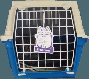 Transportkasse til kat