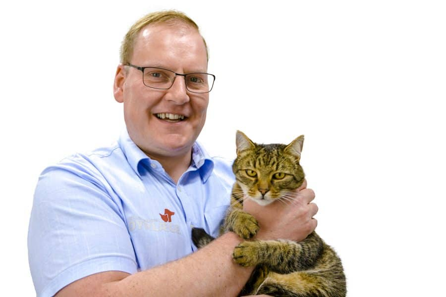 Dyrlæge med kat på armen